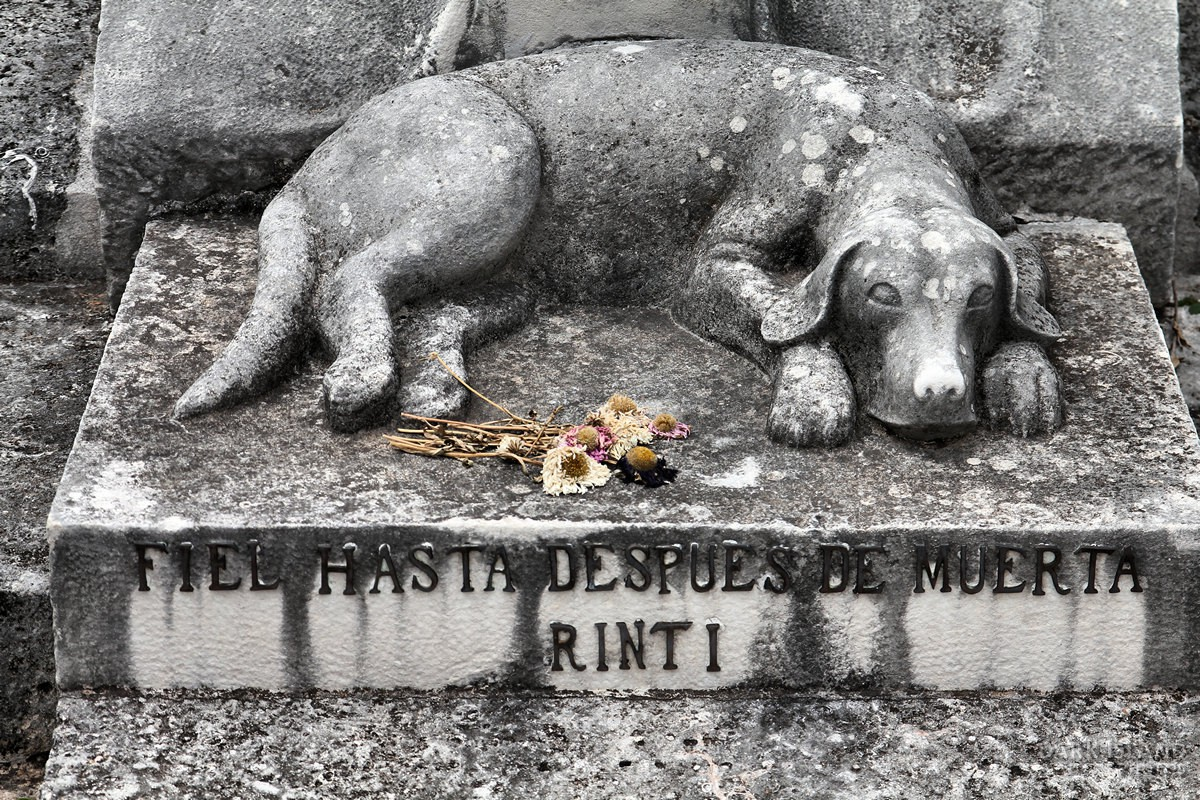 Rinti the dog's grave in Havana, Cuba